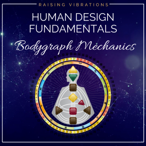 Human Design Bodygraph Mechanics