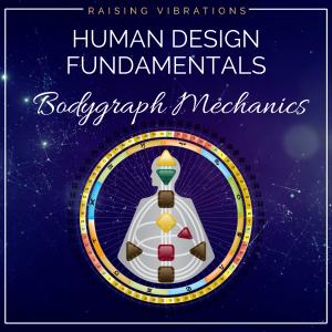 Human Design Bodygraph Mechanics
